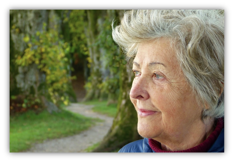 safe housing for aging adults